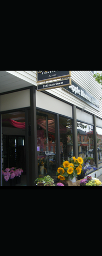 Our Newcastle and Orono Locations